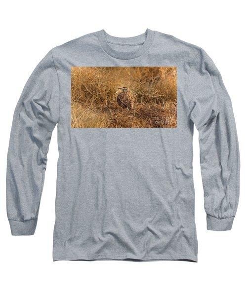 Meadowlark Hiding In Grass Long Sleeve T-Shirt by Robert Frederick
