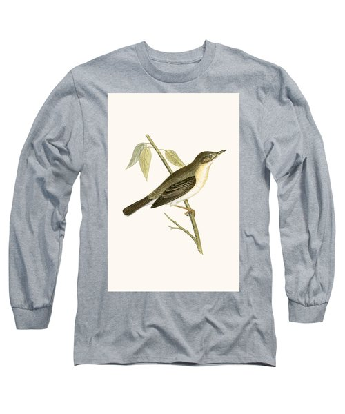 Olivaceous Warbler Long Sleeve T-Shirt by English School