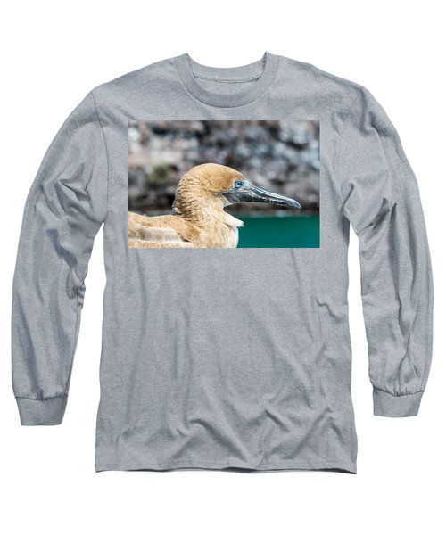 Red Footed Booby Juvenile Long Sleeve T-Shirt by Jess Kraft