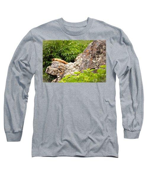 Rock Chuck Long Sleeve T-Shirt by Lana Trussell
