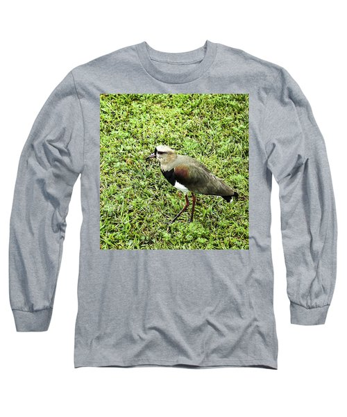 Southern Lapwing Long Sleeve T-Shirt by Norman Johnson