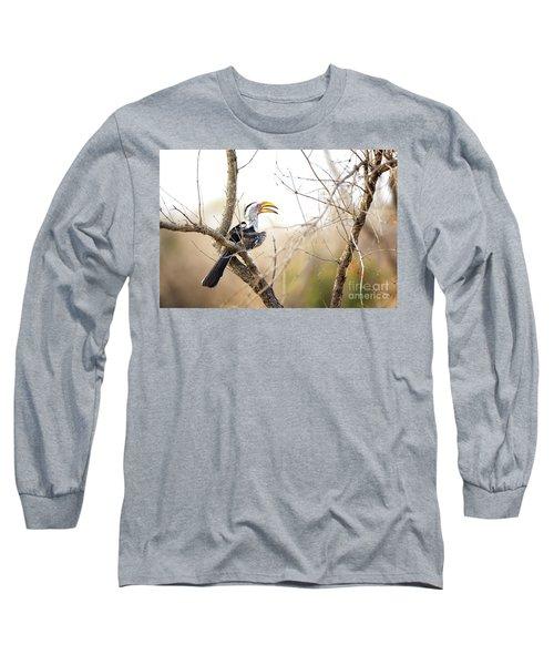 Yellow-billed Hornbill Sitting In A Tree.  Long Sleeve T-Shirt by Jane Rix