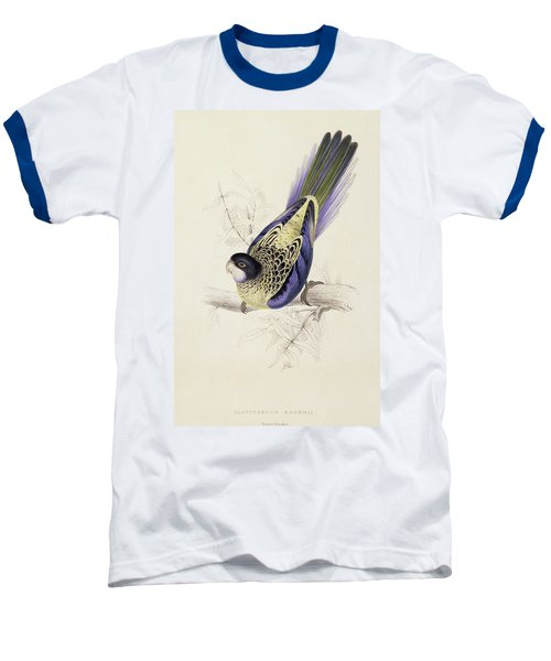 Browns Parakeet Baseball T-Shirt by Edward Lear