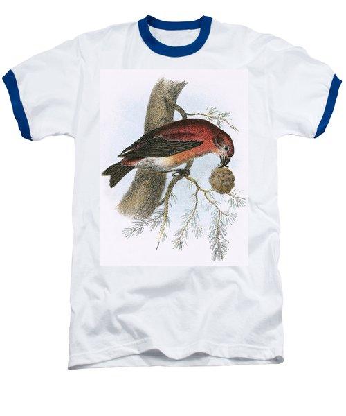 Crossbill Baseball T-Shirt by English School