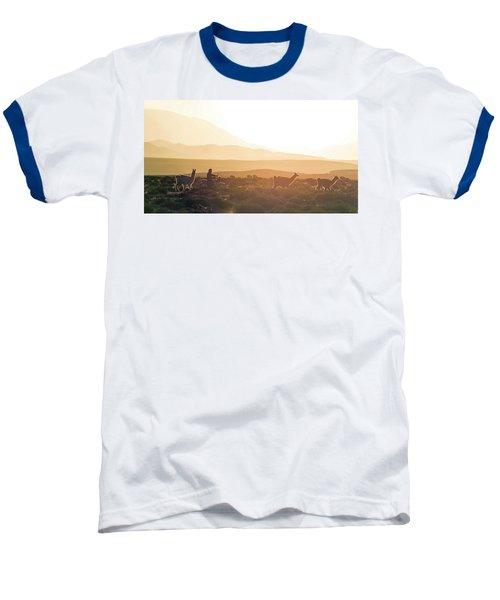 Herd Of Llamas Lama Glama In A Desert Baseball T-Shirt by Panoramic Images