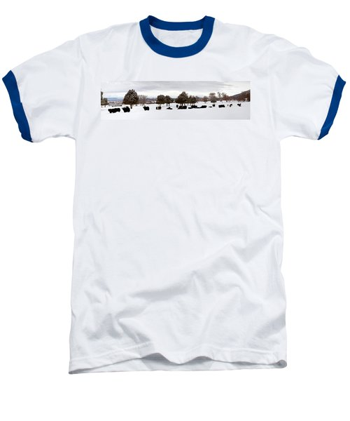 Herd Of Yaks Bos Grunniens On Snow Baseball T-Shirt by Panoramic Images