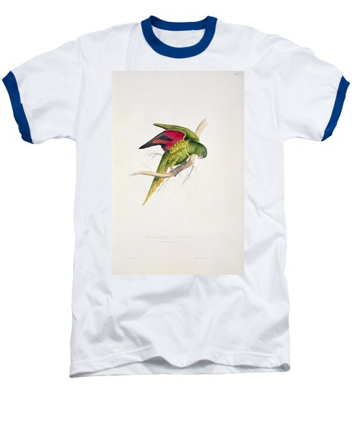 Matons Parakeet Baseball T-Shirt by Edward Lear