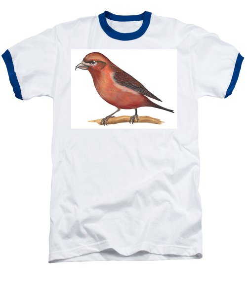 Red Crossbill Baseball T-Shirt by Anonymous