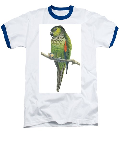 Rock Parakeet Baseball T-Shirt by Anonymous