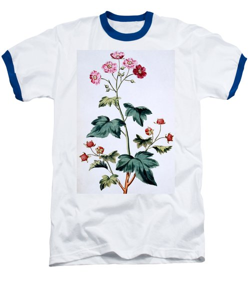 Sweet Canada Raspberry Baseball T-Shirt by John Edwards