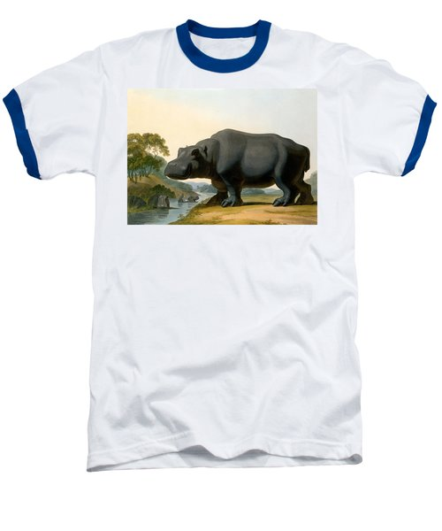 The Hippopotamus, 1804 Baseball T-Shirt by Samuel Daniell