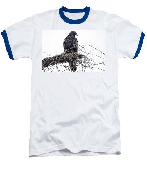Turkey Vulture Baseball T-Shirt by Douglas Barnard