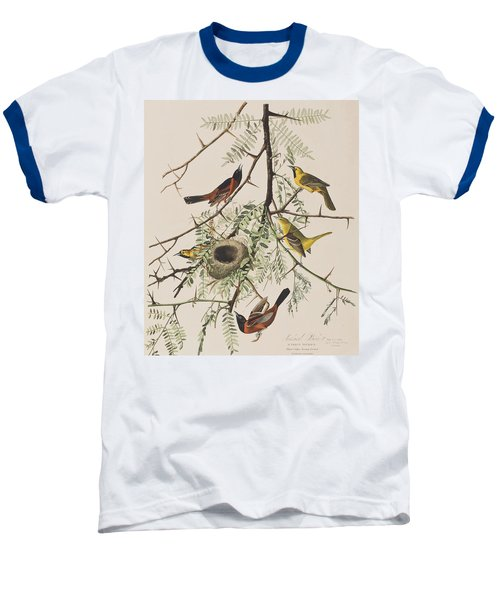Orchard Oriole Baseball T-Shirt by John James Audubon