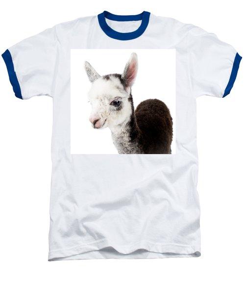 Adorable Baby Alpaca Cuteness Baseball T-Shirt by TC Morgan
