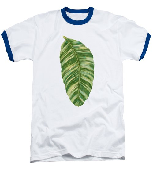 Rainforest Resort - Tropical Leaves Elephant's Ear Philodendron Banana Leaf Baseball T-Shirt by Audrey Jeanne Roberts