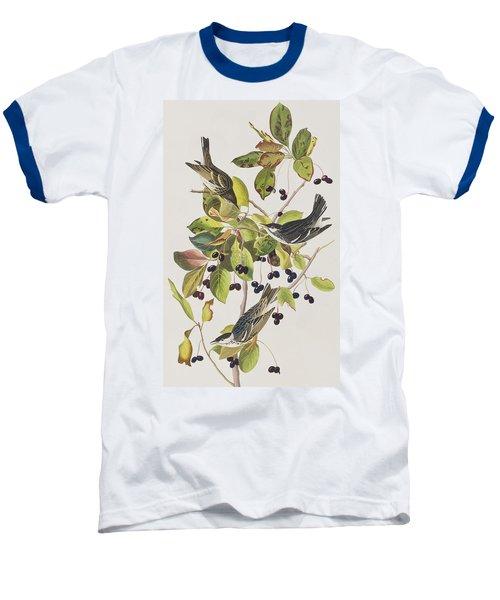 Black Poll Warbler Baseball T-Shirt by John James Audubon