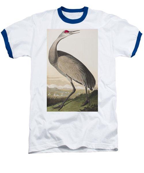Hooping Crane Baseball T-Shirt by John James Audubon