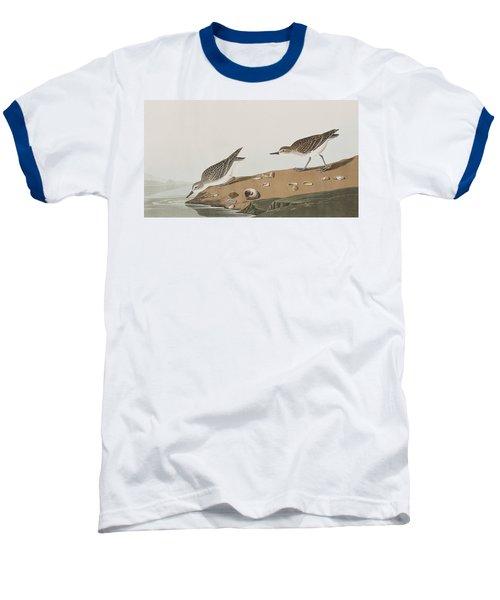 Semipalmated Sandpiper Baseball T-Shirt by John James Audubon