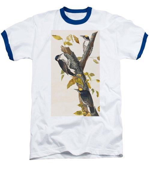 Three Toed Woodpecker Baseball T-Shirt by John James Audubon