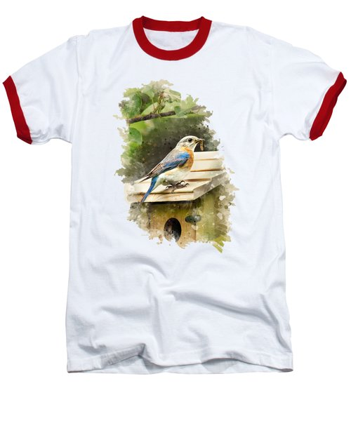 Eastern Bluebird Watercolor Art Baseball T-Shirt by Christina Rollo