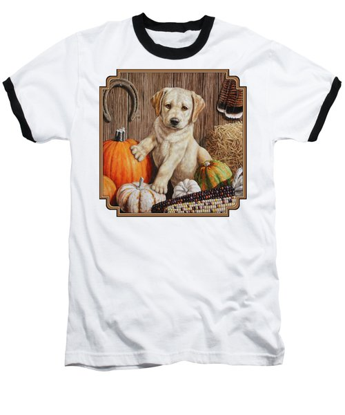 Pumpkin Puppy Baseball T-Shirt by Crista Forest