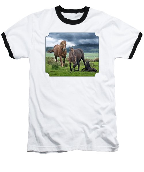 Dartmoor Ponies Baseball T-Shirt by Gill Billington