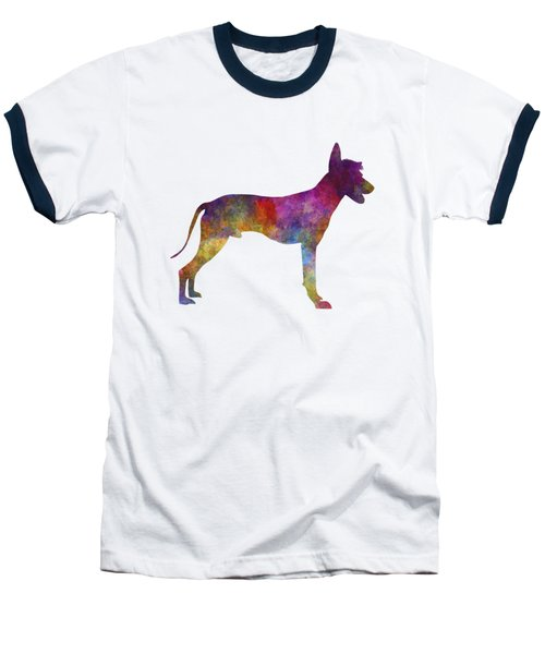 Peruvian Hairless Dog In Watercolor Baseball T-Shirt by Pablo Romero