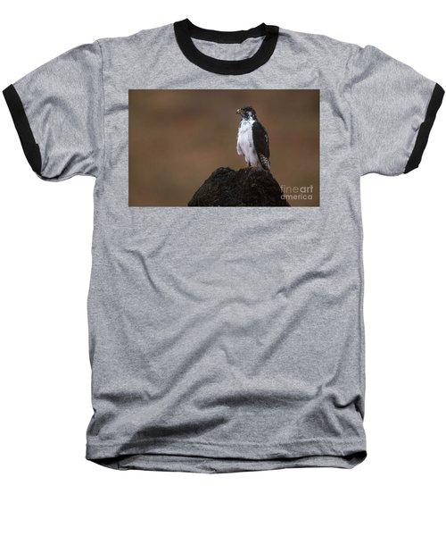 Augur Buzzard Baseball T-Shirt by Art Wolfe