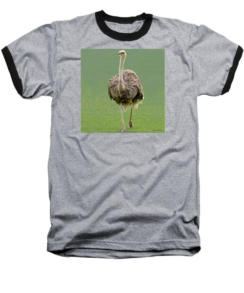 Emu Baseball T-Shirt by Ellen Henneke