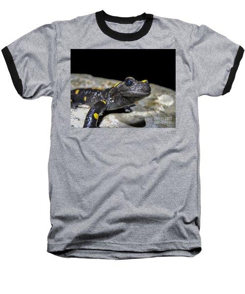 Fire Salamander Salamandra Salamandra Baseball T-Shirt by Shay Levy