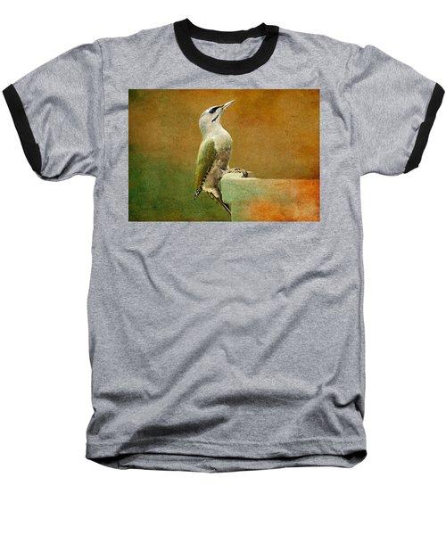 Grey-headed Woodpecker Baseball T-Shirt by Heike Hultsch