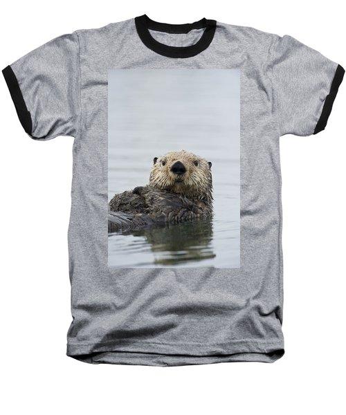 Sea Otter Alaska Baseball T-Shirt by Michael Quinton