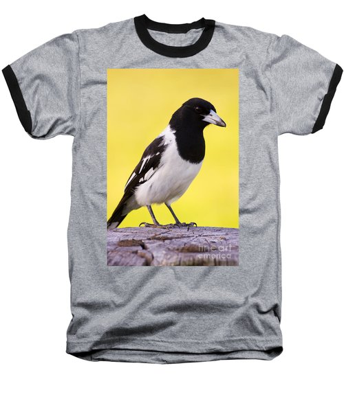 Fencepost Magpie Baseball T-Shirt by Jorgo Photography - Wall Art Gallery