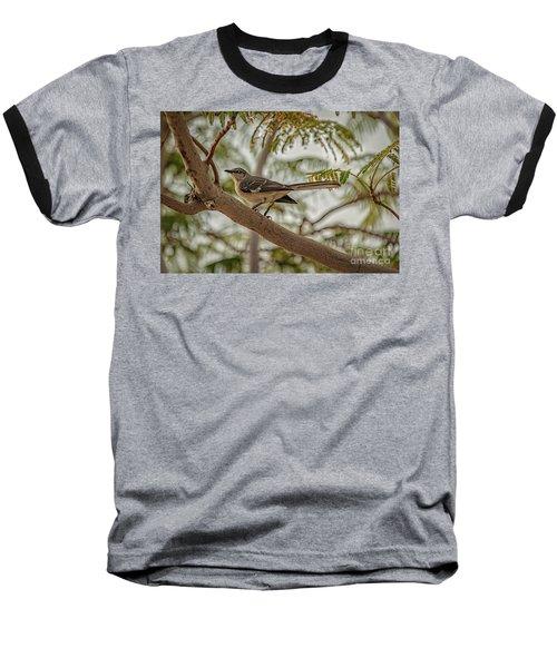 Mockingbird Baseball T-Shirt by Robert Bales