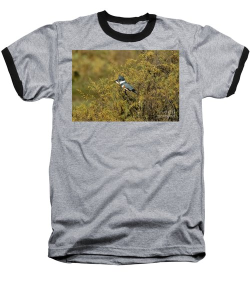 Belted Kingfisher With Fish Baseball T-Shirt by Anthony Mercieca