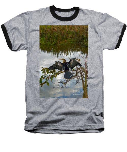Anhinga Baseball T-Shirt by Mark Newman