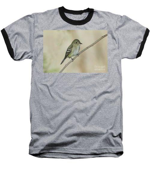 Acadian Flycatcher Baseball T-Shirt by Anthony Mercieca