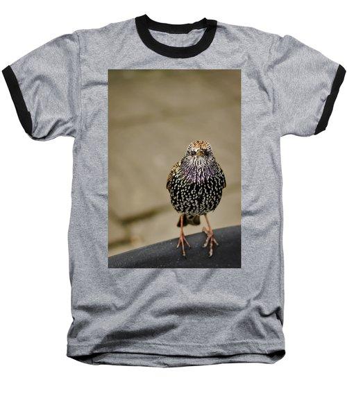 Angry Bird Baseball T-Shirt by Heather Applegate