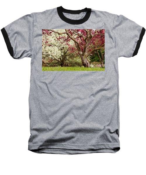 Apple Blossom Colors Baseball T-Shirt by Joe Mamer