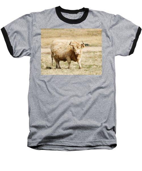 Blondie Baseball T-Shirt by Marilyn Hunt