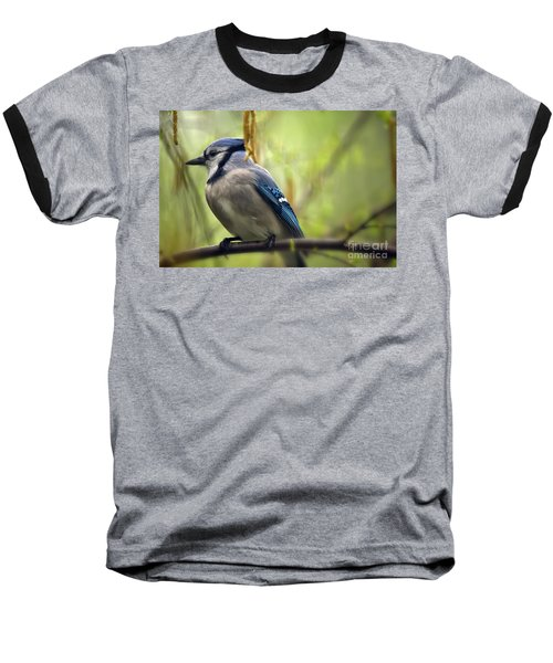 Blue Jay On A Misty Spring Day Baseball T-Shirt by Lois Bryan