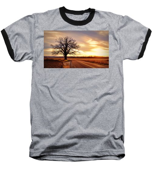 Burr Oak Silhouette Baseball T-Shirt by Cricket Hackmann