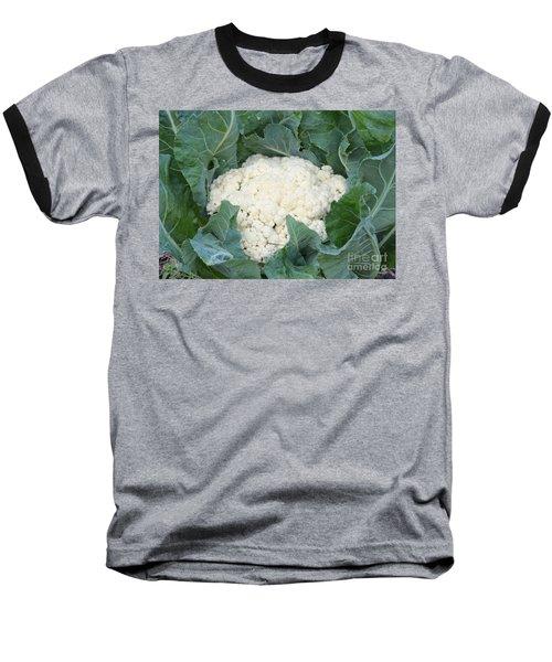 Cauliflower Baseball T-Shirt by Carol Groenen