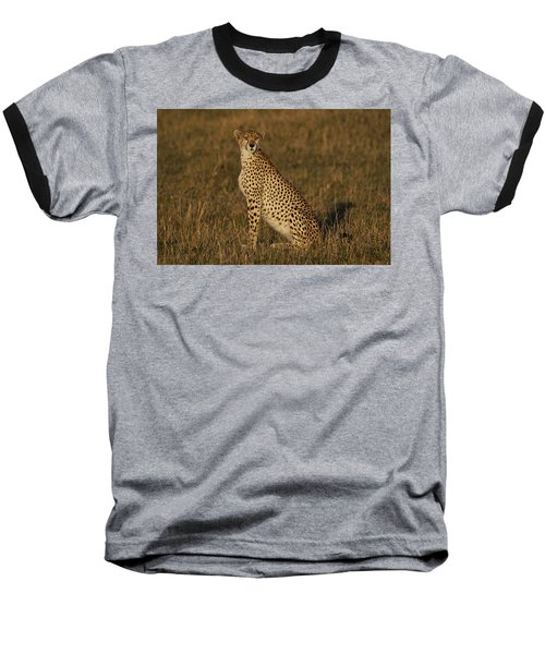 Cheetah On Savanna Masai Mara Kenya Baseball T-Shirt by Hiroya Minakuchi