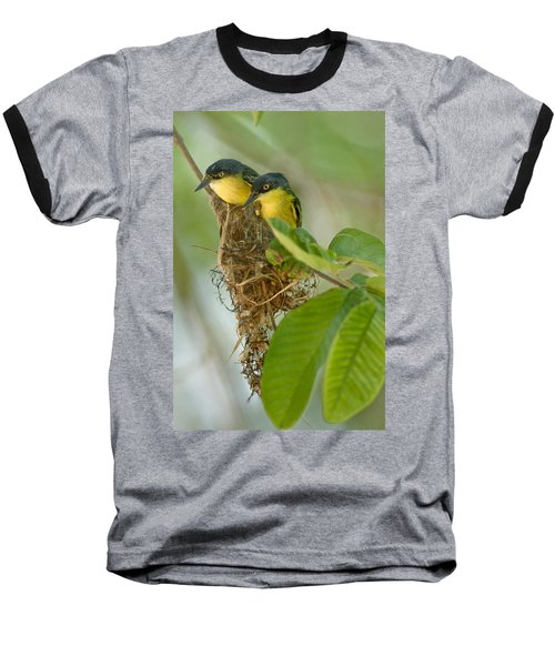 Close-up Of Two Common Tody-flycatchers Baseball T-Shirt by Panoramic Images