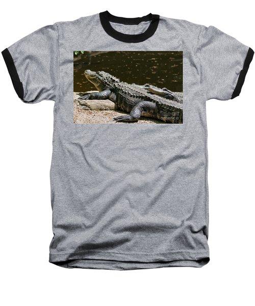 Comfy Cozy Baseball T-Shirt by Lois Bryan