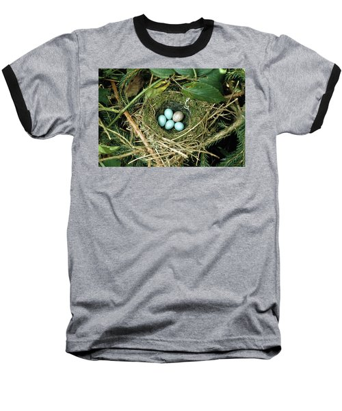 Common Cuckoo Cuculus Canorus Egg Laid Baseball T-Shirt by Jean Hall