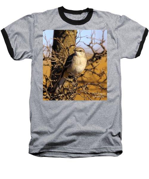 Common Mockingbird Baseball T-Shirt by Robert Frederick