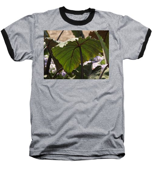 Elephant Ear Baseball T-Shirt by James Peterson
