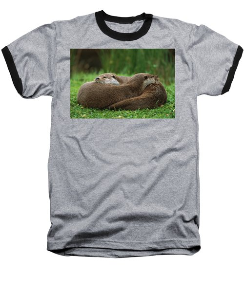 European River Otter Lutra Lutra Baseball T-Shirt by Ingo Arndt